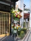 Daiatugi